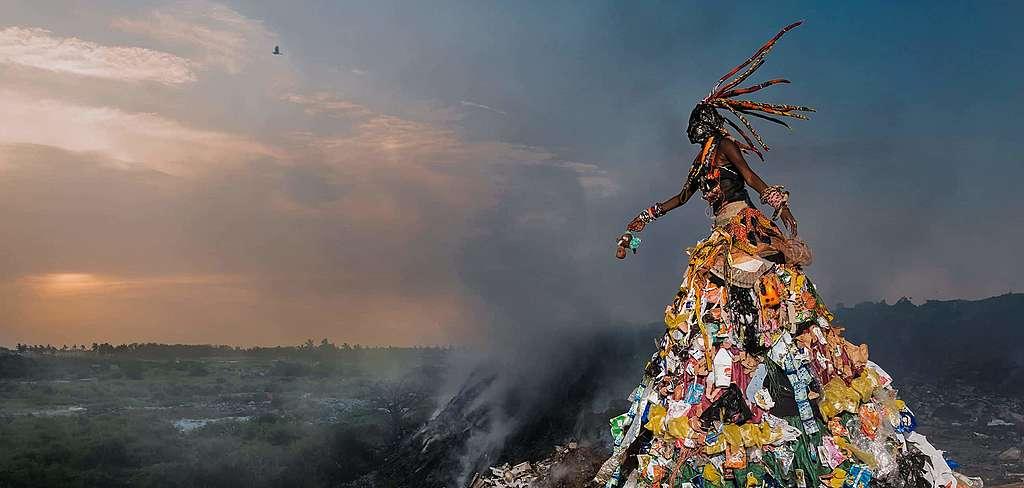 Quand le vert des arbres succombe au plastique
