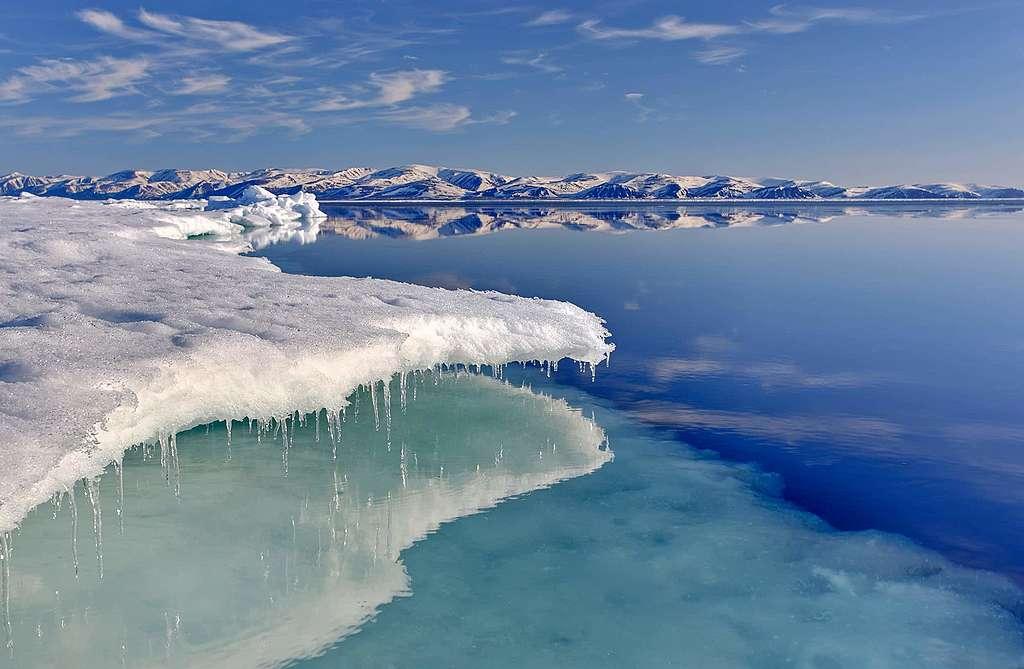 Arktisches Öl vor Gericht: Eine Anwältin berichtet