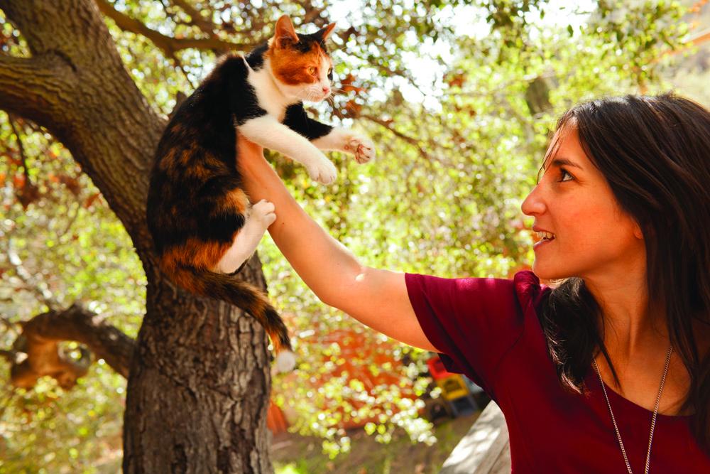 Ramona «Nite Jewel» Gonzalez: «Natur ist etwas für Einzelgänger.»
