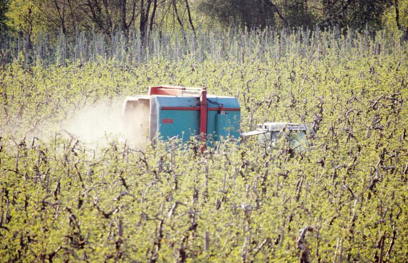 Unnötiger Pestizideinsatz