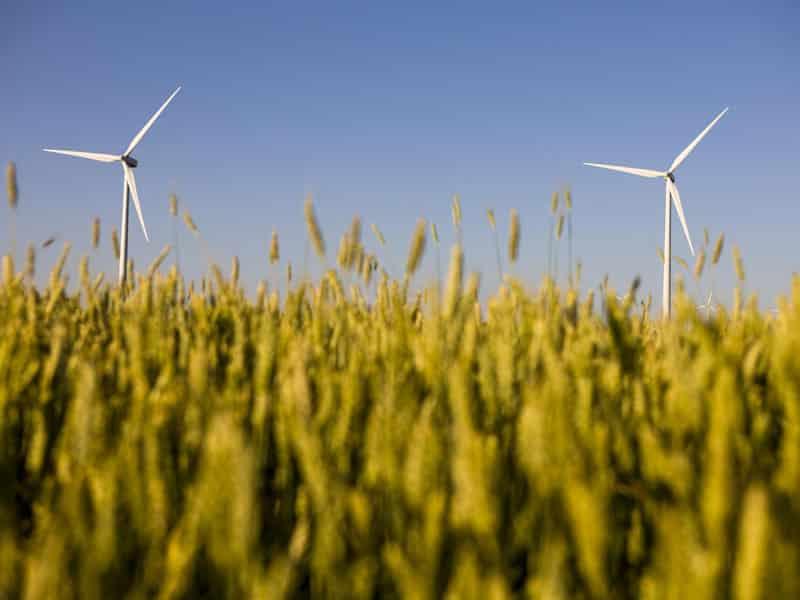 Les énergies renouvelables bravent la crise et trouvent leur place