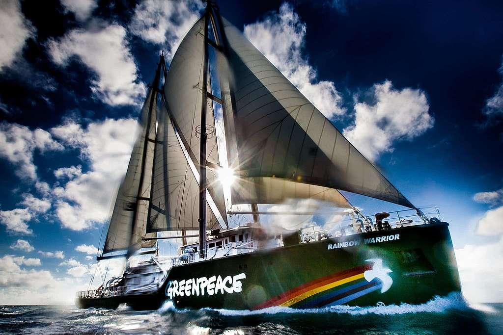 Rainbow Warrior: Ikone und Leuchtturm für Millionen von Menschen