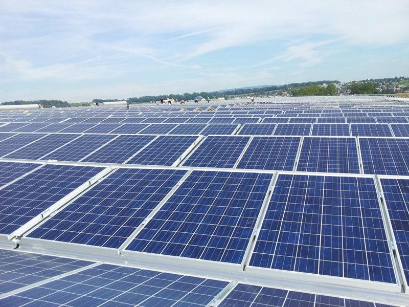 Energiewende in Wohlen: Solarpanels so weit das Auge reicht