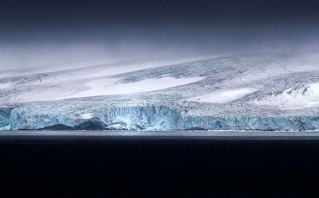 Protéger le krill c'est protéger l'Antarctique!