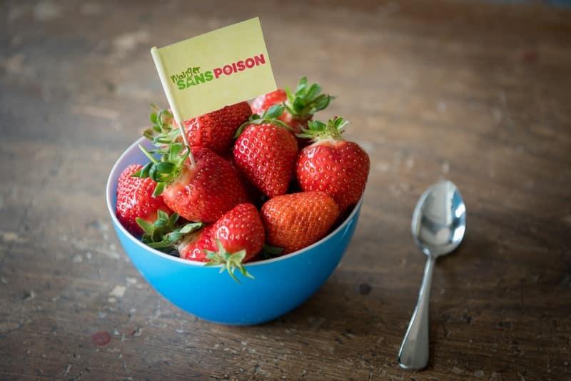Pesticides et fraises suisses: un doux poison pour les bébés