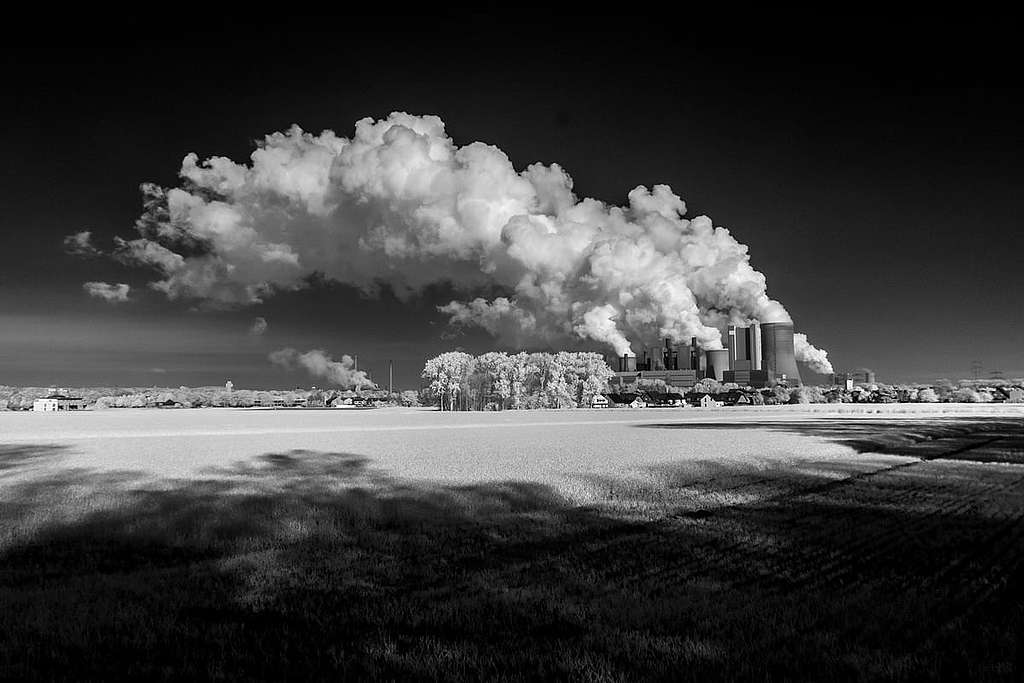 Assurances: 20 milliards d'investissements retirés du secteur du charbon
