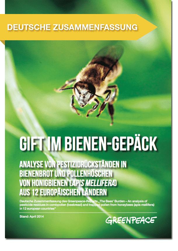 «The Bee's Burden»: Warum die Bienen unsere Hilfe brauchen und wir ihre
