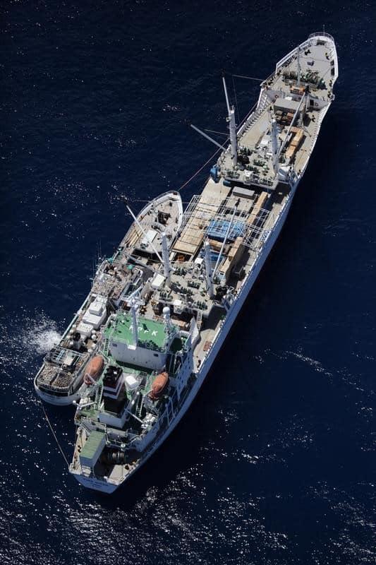 Thunfischumladung im Indischen Ozean