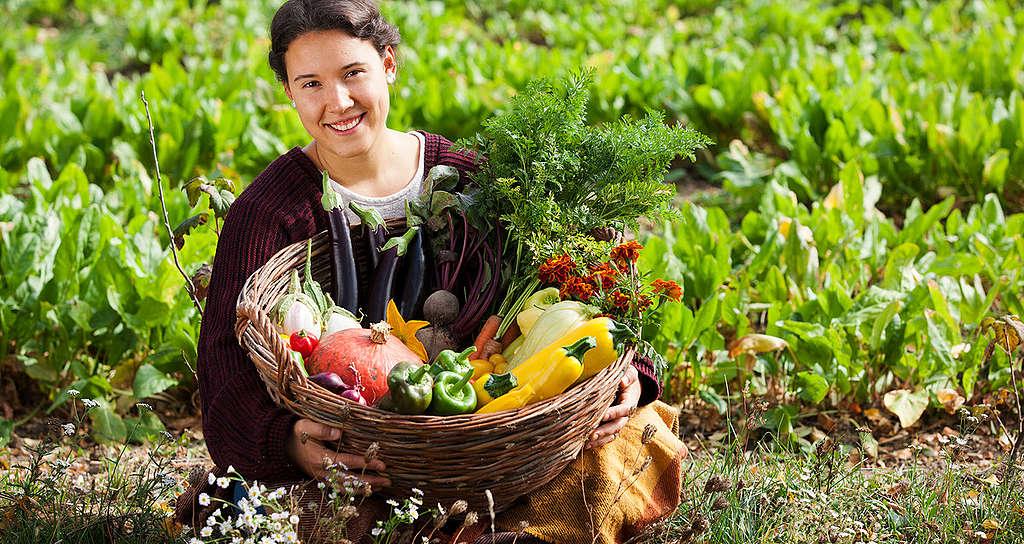 #LessMeatMoreVeg: die Veggie-Woche zum Mitmachen