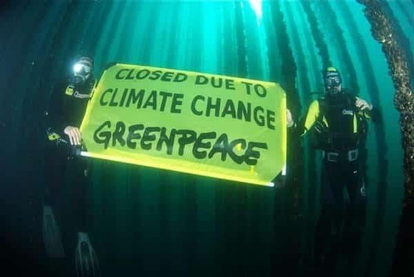 2009 © Greenpeace / Jjcandan