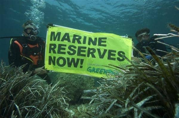 2009 © Greenpeace / Gavin Parsons