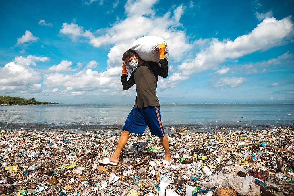 Die Müll-Magnaten