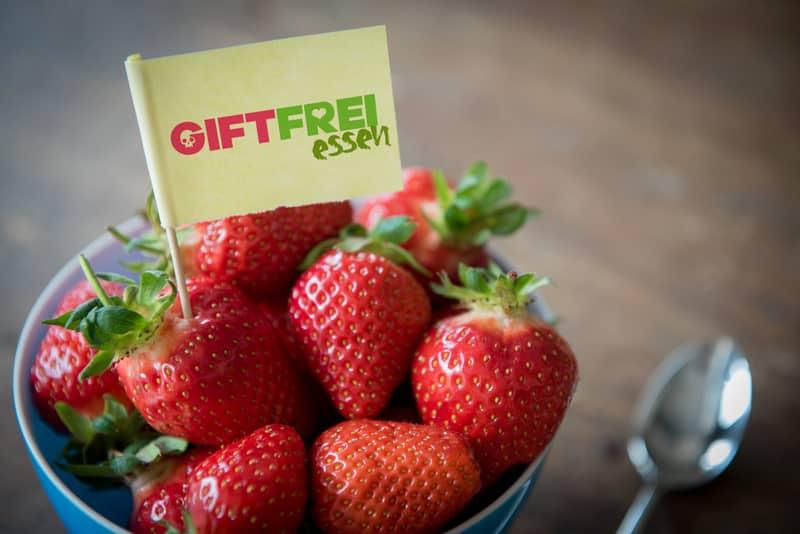 Erdbeeren: süsses Gift