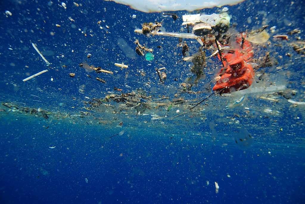 Pollution plastique des océans : évitez d'utiliser des pailles!