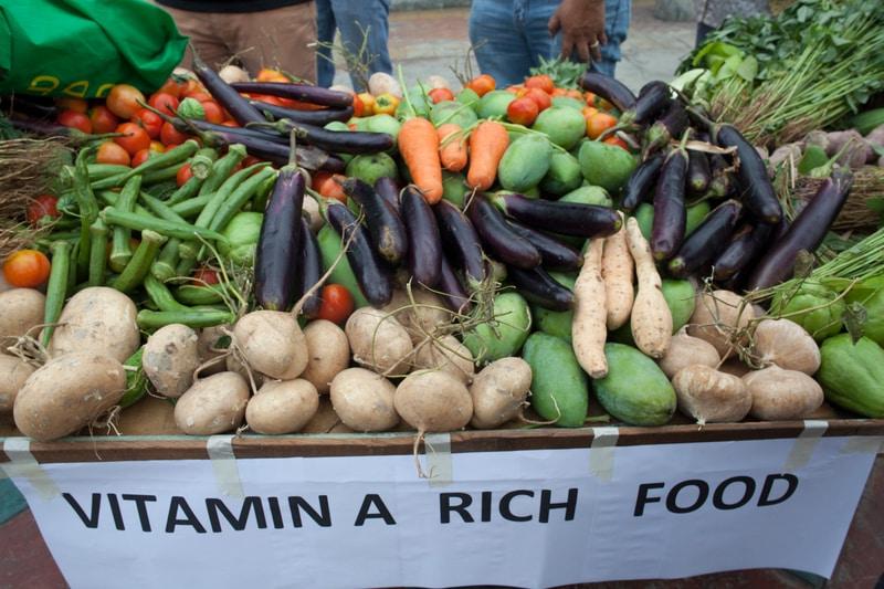 Agro-Gentechnik ist keine Lösung