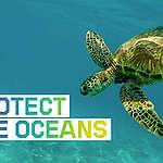 Unser Klima hängt vom Meer ab – genau wie wir