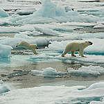 Rapport du GIEC sur les océans et la cryopshère : protéger les océans c'est protéger le climat