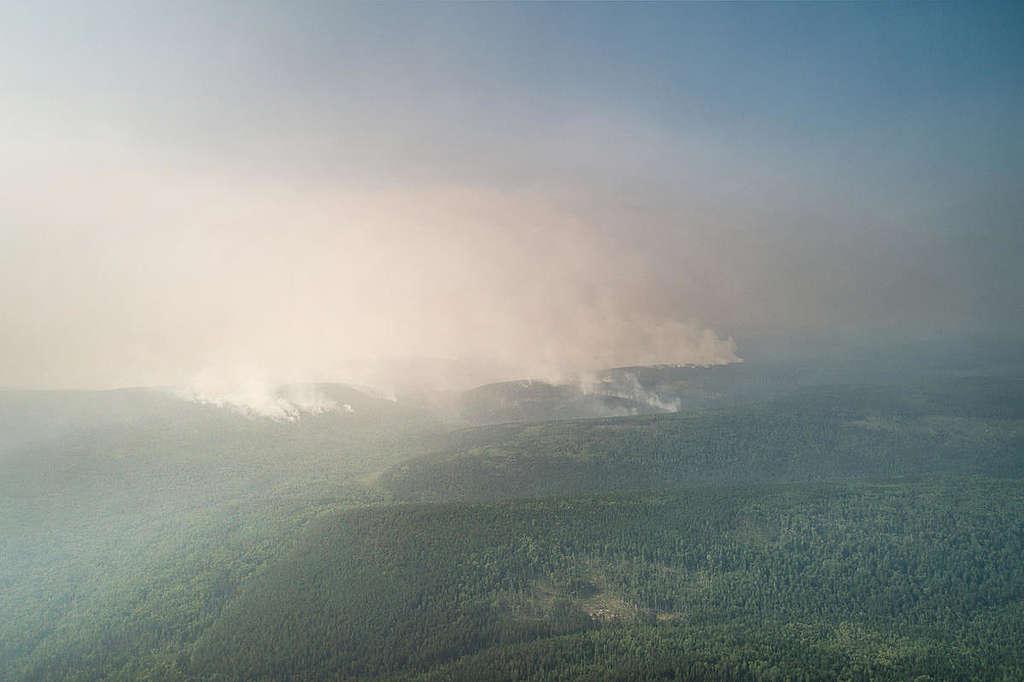 Massive Waldbrände in Sibirien sind eine Klimakatastrophe