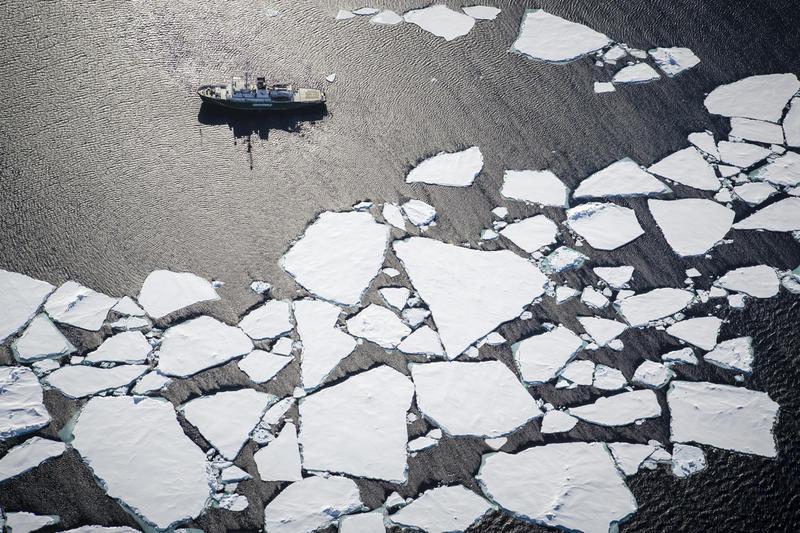 Meere brauchen Schutzgebiete