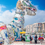 Greenpeace Suisse rapport annuel 2019