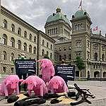 33'287 personnes pour une Suisse libre d'importations de fourrage et de viande
