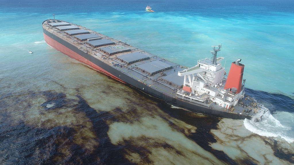 Schiffbruch der Wakashio: Katastrophe im Paradies