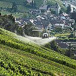 Pestizide: vom Winde verweht!