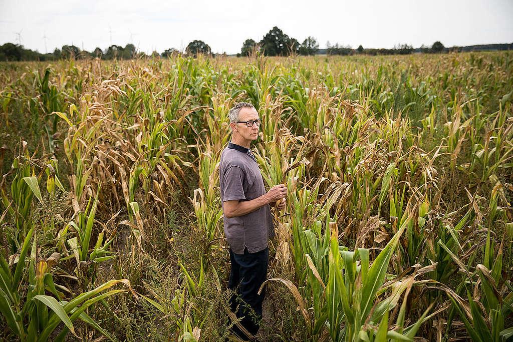 原告德國農夫Heiner Lütke Schwienhorst控告政府無為,氣候變遷引發熱浪直接衝擊農作收成,影響生計。