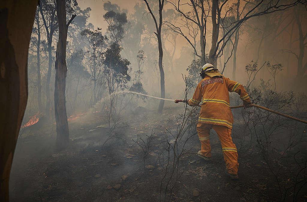 62歲的Tony Weston與一眾新南威爾斯州鄉鎮消防隊隊友,在小鎮Numeralla森林火場英勇救火。
