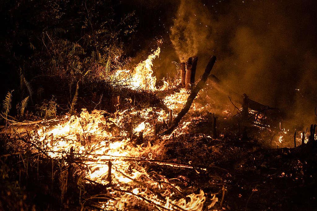 8月,印尼加里曼丹中部已開始發生森林大火。