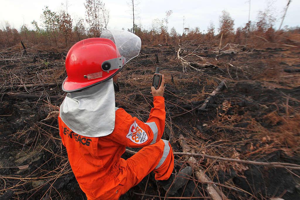 綠色和平印尼辦公室的林火消防隊(FFP)於受災現場進行調查與記錄。