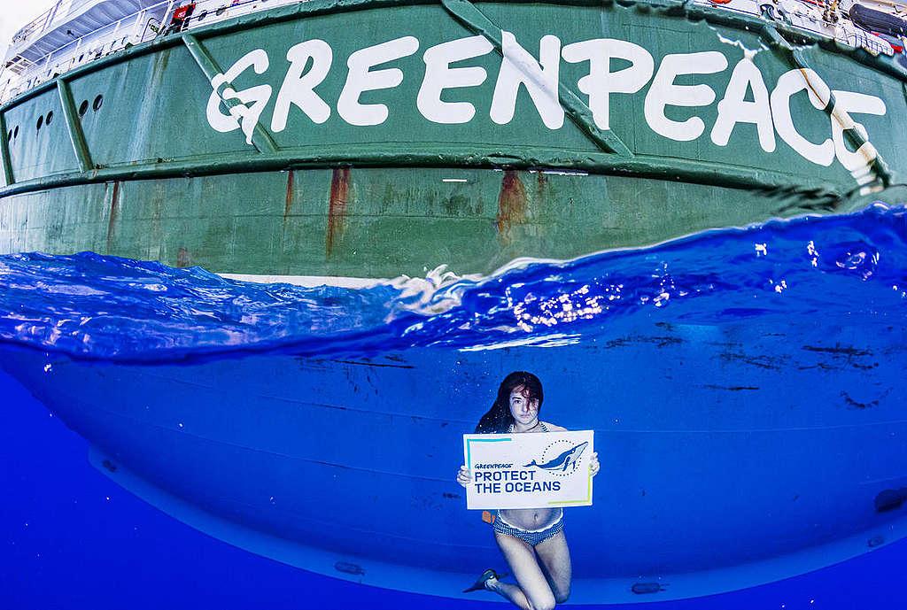 雪琳伍德利參與綠色和平船艦調查之旅,見證馬尾藻海受塑膠污染的情形。