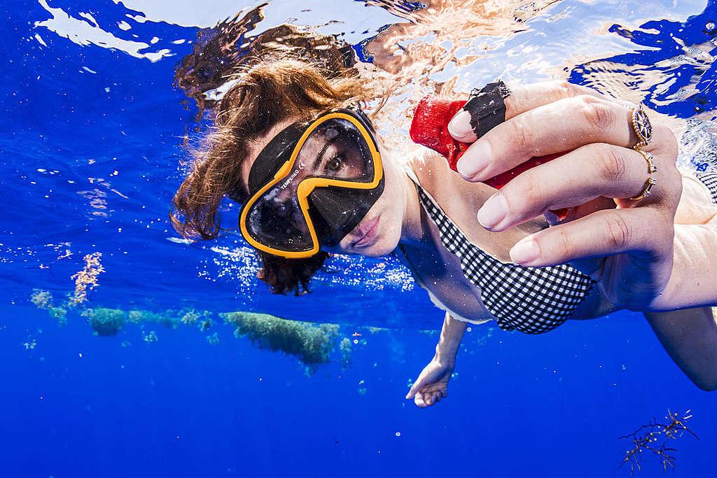 雪琳伍德利下水觀察海洋受塑膠污染的情形時,撿拾到塑膠垃圾。