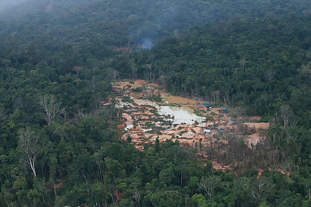 珍貴雨林被破壞,出現心疾病的風險就更高,如今疫情已蔓延至原住民部落。