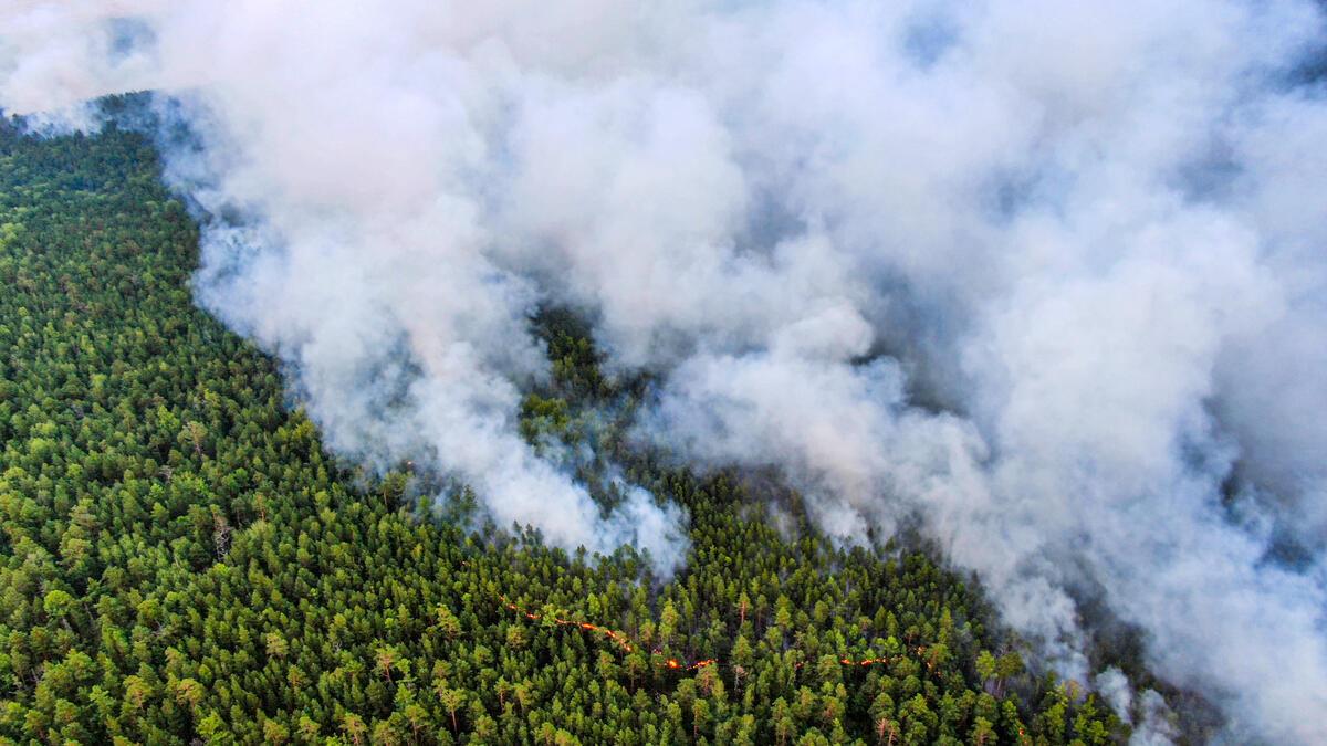 2020年7月21日,綠色和平俄羅斯調查團隊前往西伯利亞大火現場,紀錄下火災產生大量煙霧,正蔓延至鄰近城市。