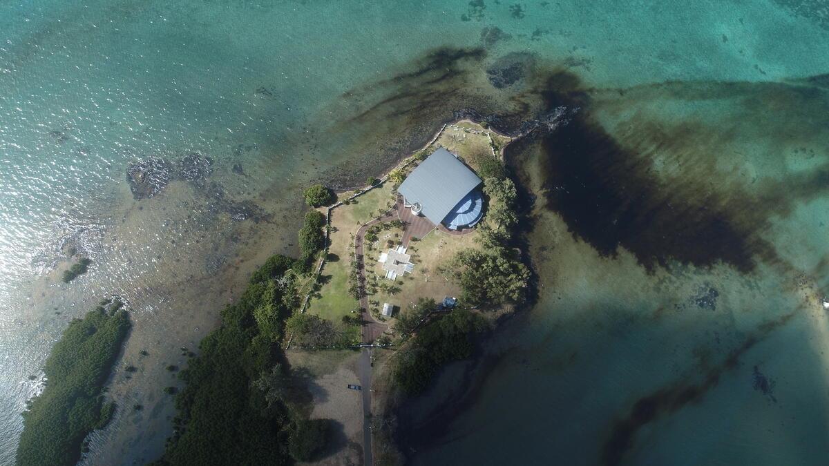 載有 4,000 噸燃油的日本貨輪船「若潮號」,於模里西斯東南沿岸的珊瑚礁擱淺,導致船身破裂,逾千噸燃油外洩,油汙在湛藍的海域迅速擴散,殃及海岸綿延超過 30 公里。
