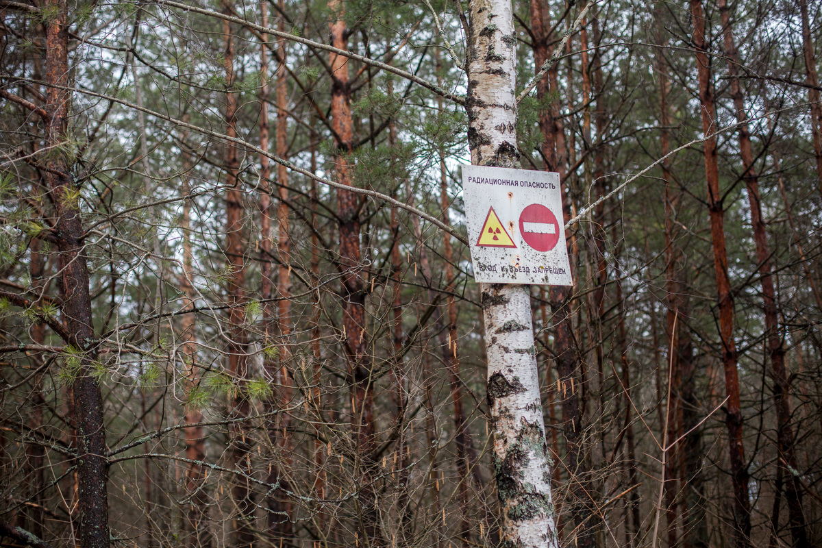 Warning Sign inside the Exclusion Zone in Belarus. © Liza  Udilova / Greenpeace