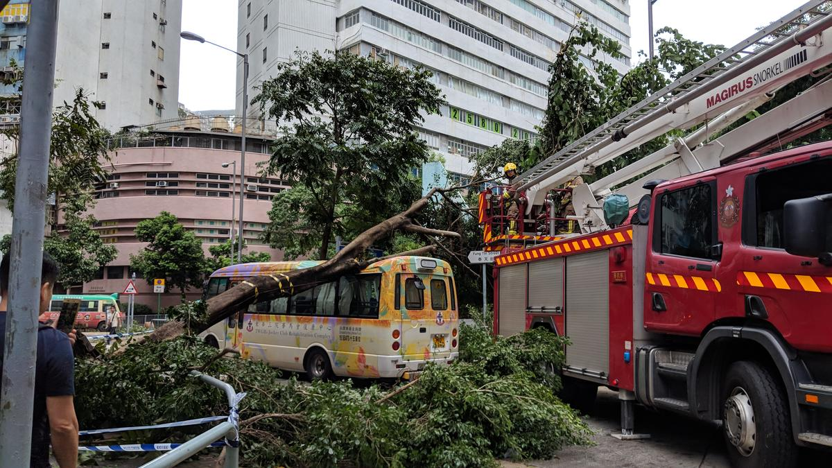 Typhoon Mangkhut impacts in Hong Kong. © Greenpeace