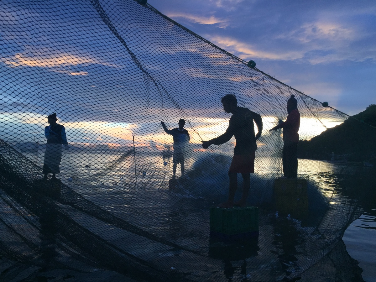 Local Fishermen Choose Sustainable Fishing Practices in Thailand. © Biel Calderon / Greenpeace