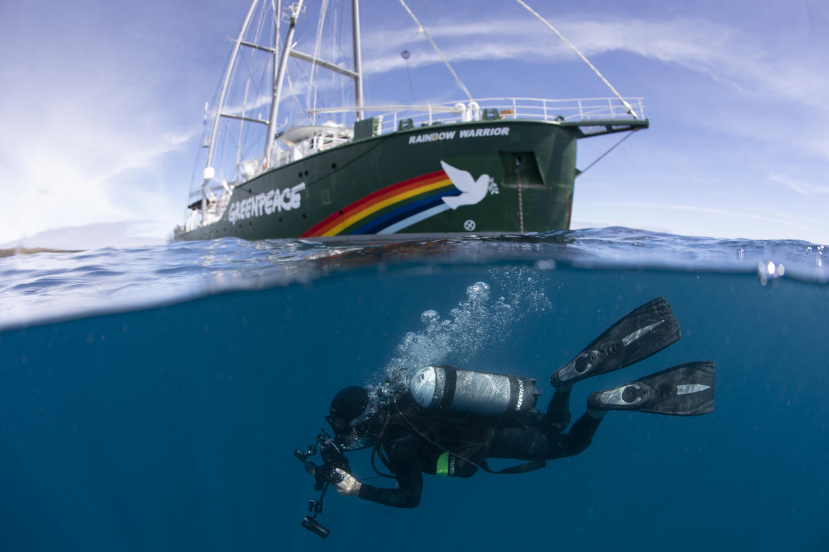 Diver with the Rainbow Warrior in the Great Australian Bight. © Richard Robinson / Greenpeace