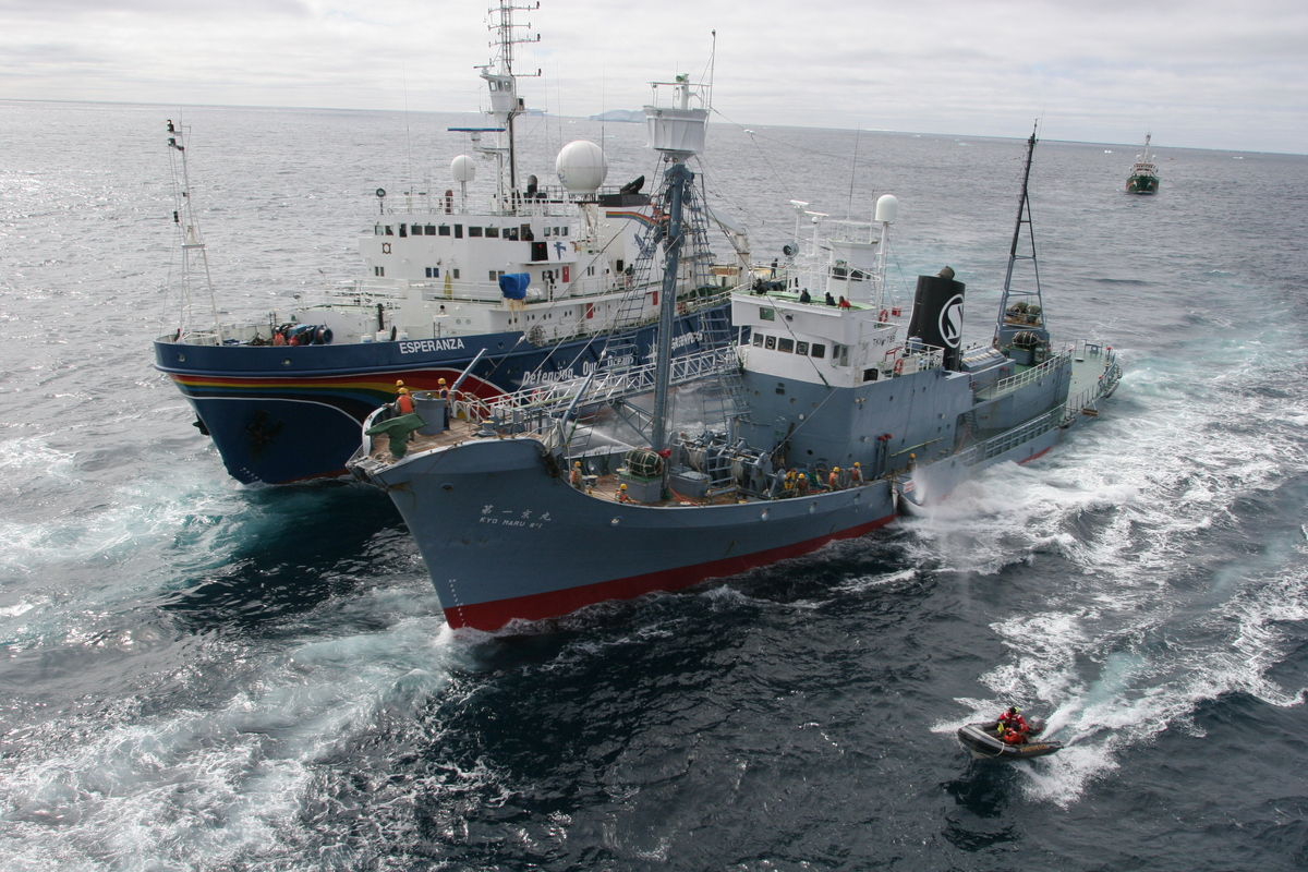 Action against Japanese Whaling Fleet - Southern Ocean Tour 2005 - Sutton-Hibbert. © Greenpeace / Jeremy Sutton-Hibbert