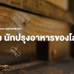 Earth Day Matters EP4 : ผึ้ง นักปรุงอาหารของโลก