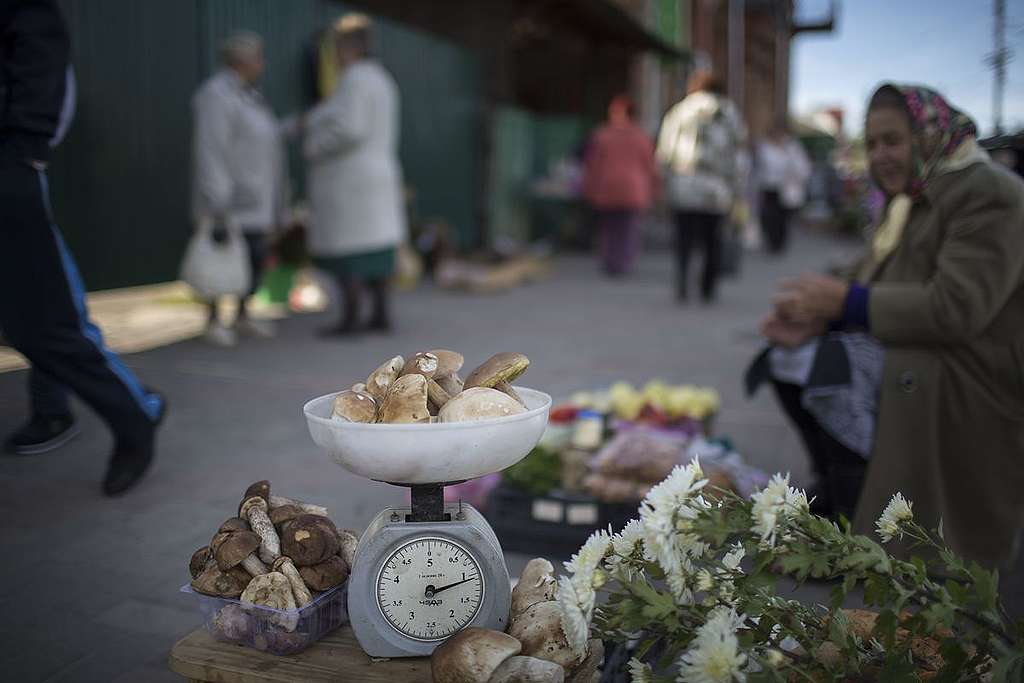 Resident Sells Local Produce in Russian Market. © Denis Sinyakov / Greenpeace