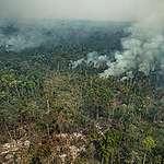 Forest Fires in Altamira, Pará, Amazon (2019). © Victor Moriyama / Greenpeace