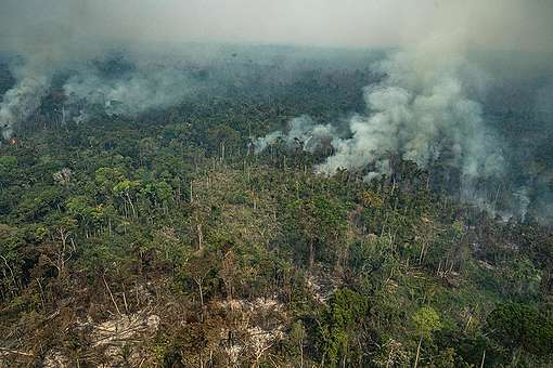 Forest Fires in Altamira, Pará, Amazon (2019). © Victor Moriyama / Greenpeace