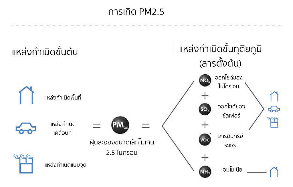 PM25 system