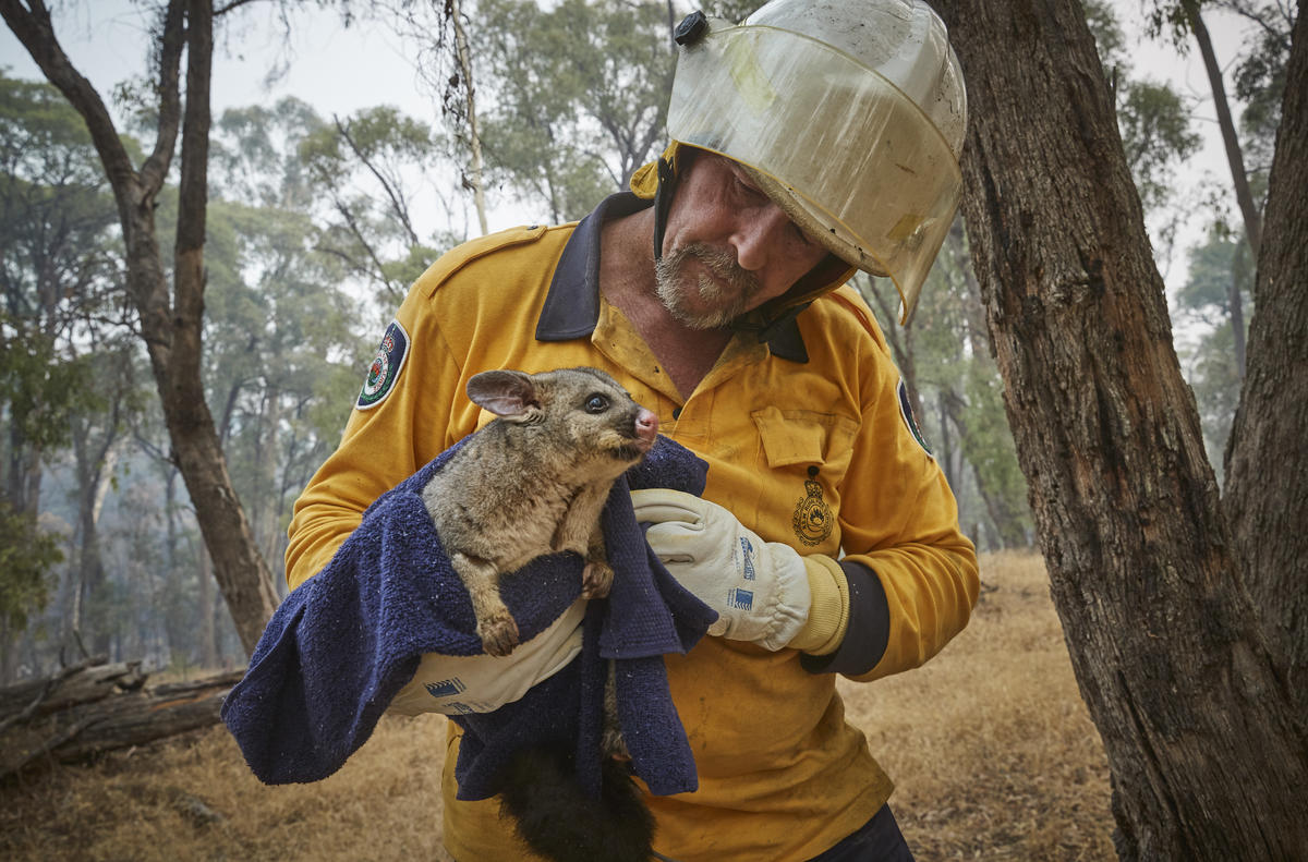 Bushfire in Snowy Mountains, Australia. © Kiran Ridley / Greenpeace