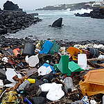 Plastic on a Beach in the Azores. © The 5 Gyres Institute