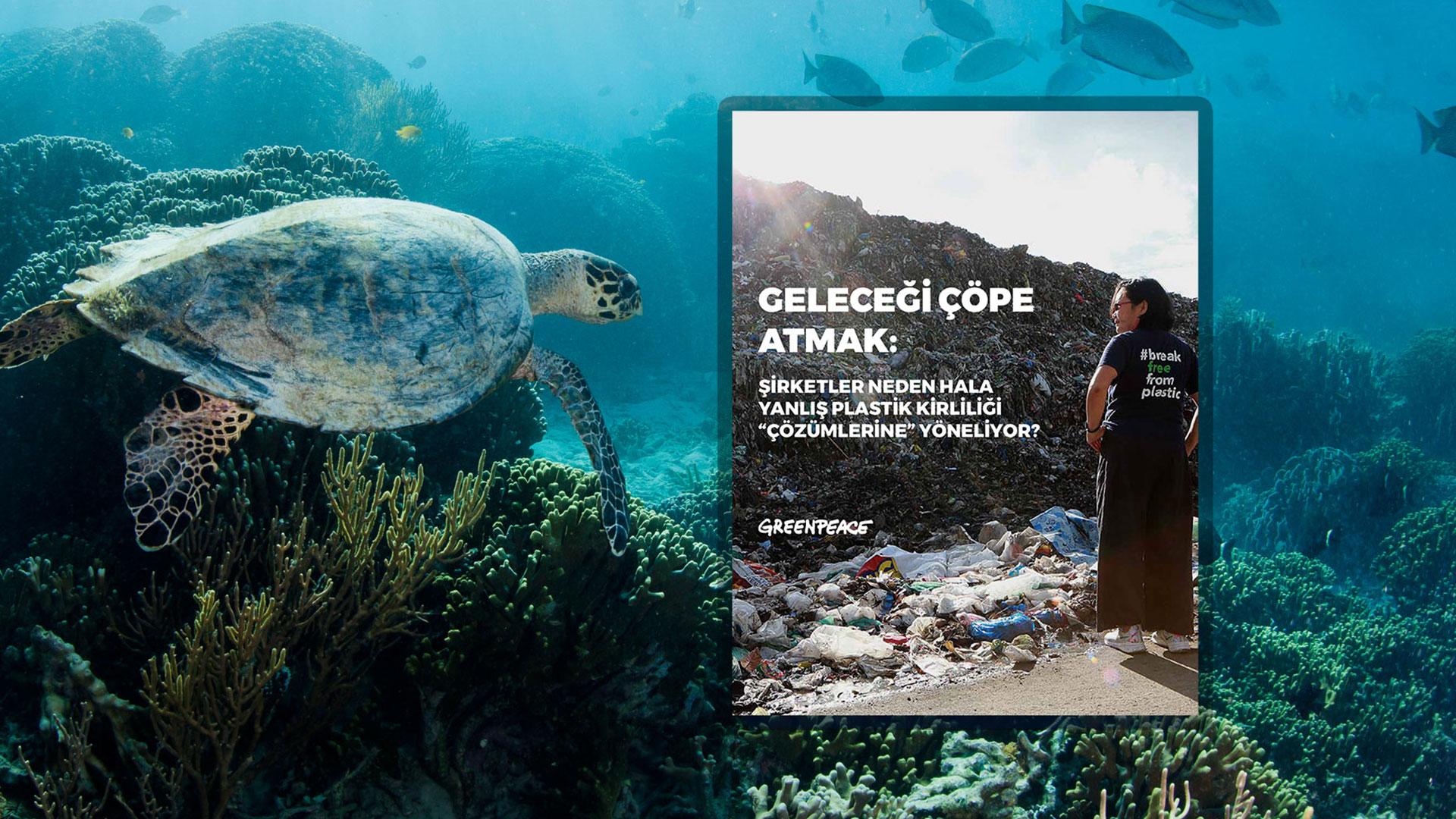 Şirketlerin Yanlış Plastik Kirliliği Çözümleri