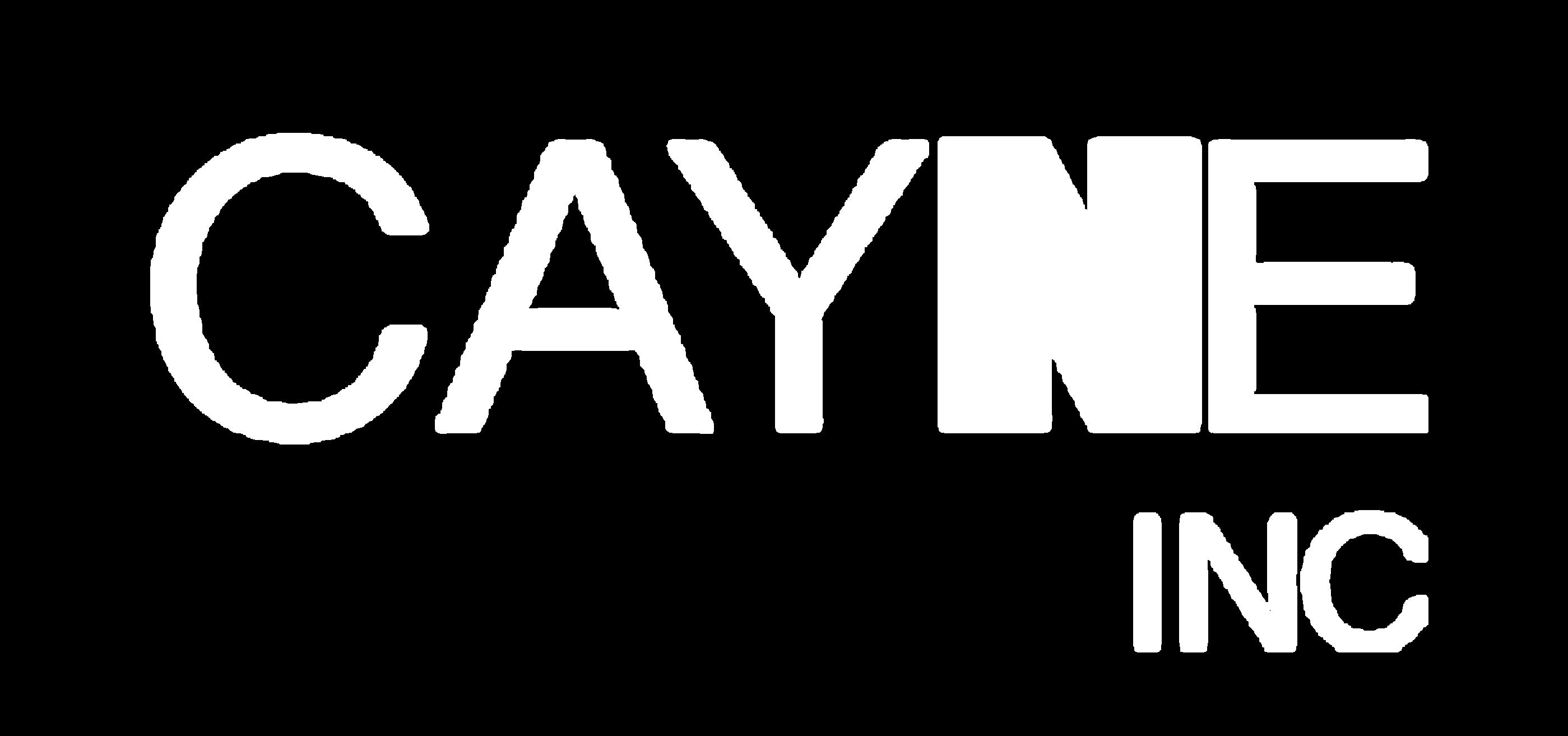 CAYNE INCORPORADORA